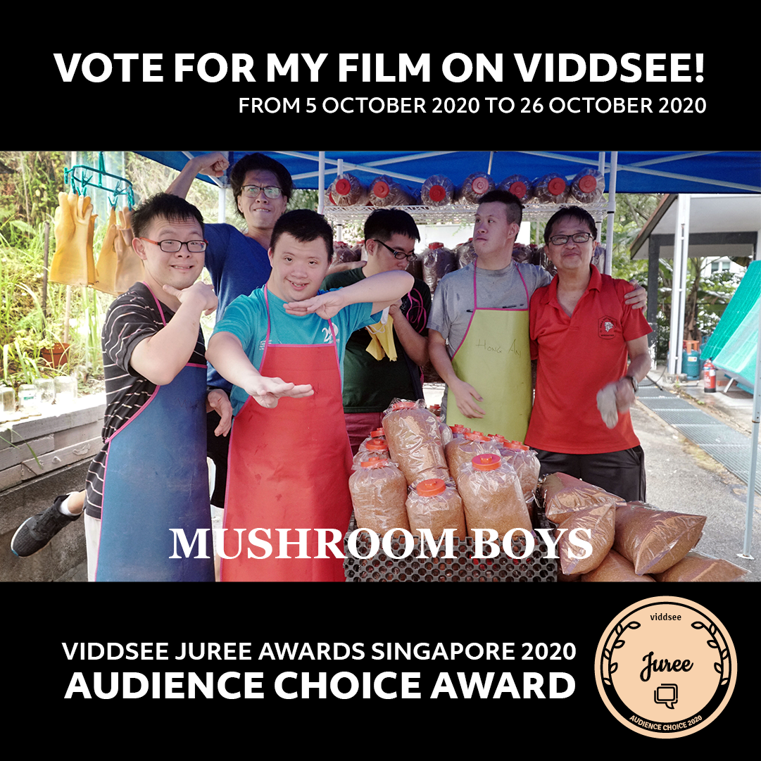 All In Recommends: Mushroom Boys - Blog